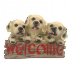 3 catei - Welcome