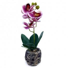 Orhidee decorative in ghiveci
