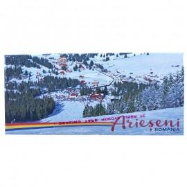 Magnet placuta - Arieseni