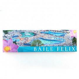 Magnet placuta - Baile Felix (7x5 cm)