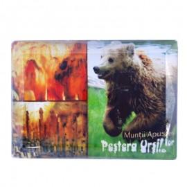 Magnet sticla - Pestera Ursilor