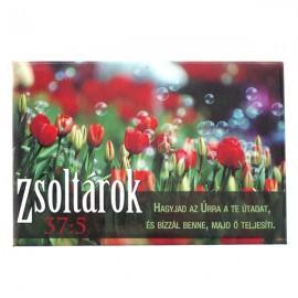 Magnet cu versete biblice - maghiara