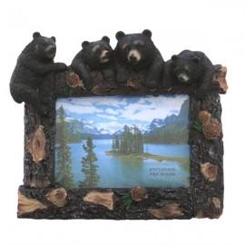 Rama foto - ursi