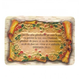Magnet - Ieremia 29:11