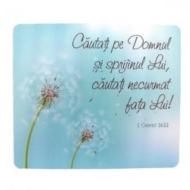 Suport mouse - 1 cronici 16:11