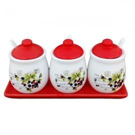 Set borcane ceramica cu capac si lingurita