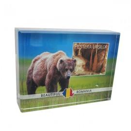 Aplica sticla cu Pestera Ursilor