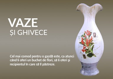 Vaze si ghivece